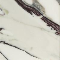 Marmor Breccia Capraia