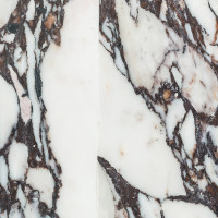 Marmor Calacatta Viola